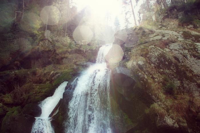 Forêt de contes